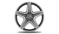 "Alloy Wheel, AMG (19"" 5-spoke)"